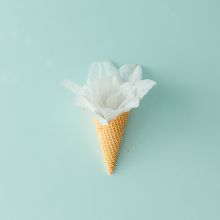 Foto de White flower in ice cream cone on pastel blue background. Flat lay. Summer tropical concept. - Imagen libre de derechos