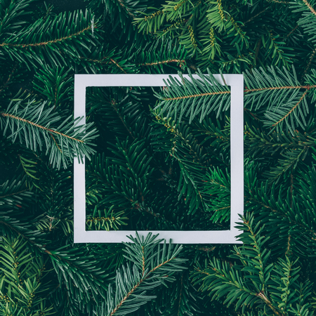 Photo for Creative layout made of Christmas tree branches with paper card note. Flat lay. Nature New Year concept. - Royalty Free Image