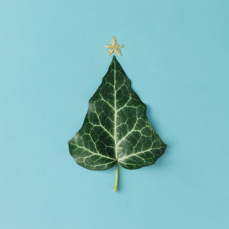 Photo pour Christmas Tree made of natural leaf. Flat lay. Minimal season concept. - image libre de droit