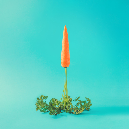 Photo for Carrot rocket launch on pastel sky blue background. Easter minimal concept. - Royalty Free Image