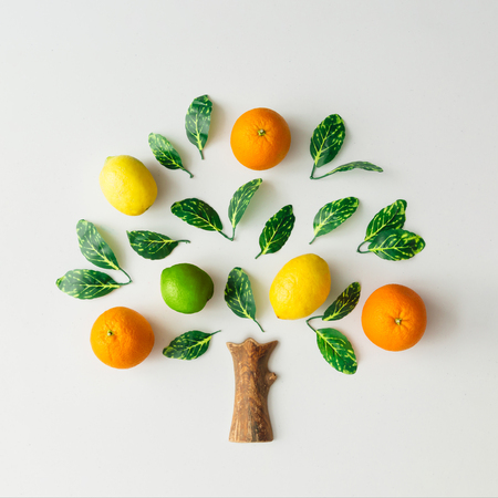 Photo for Tree made of citrus fruits, oranges, lemons, lime and green leaves on bright background. Creative flat lay nature concept. - Royalty Free Image