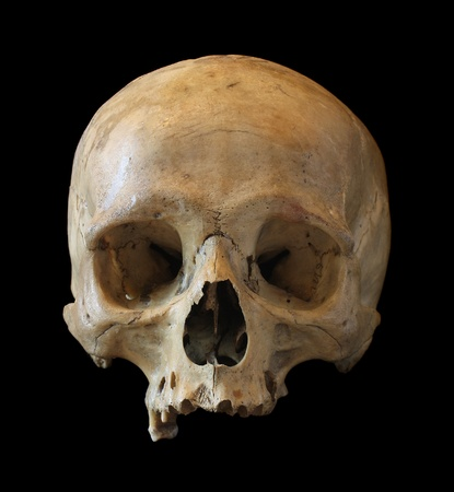 Skull of the person close-up on a black background.