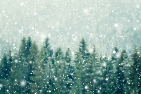 Photo for Winter background - Royalty Free Image