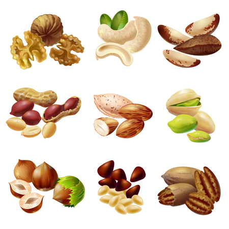 Illustration for Cartoon style Healthy Nuts Set - Royalty Free Image