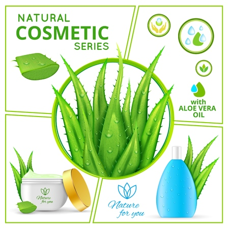 Illustration pour Realistic natural cosmetic products composition with aloe vera plants and packages of healthy skincare cream and liquid for face vector illustration - image libre de droit