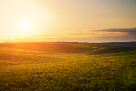 Photo for Green Field and Beautiful Sunset - Royalty Free Image