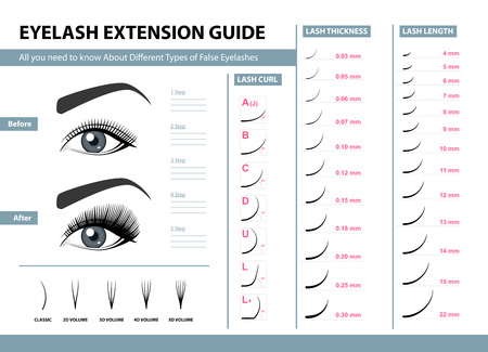Illustration pour Eyelash extension guide. - image libre de droit
