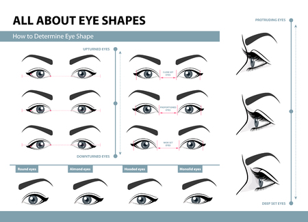 Illustration for How to determine Eye Shape. - Royalty Free Image