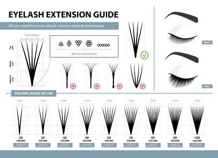 Illustration for Eyelash extension guide - Royalty Free Image