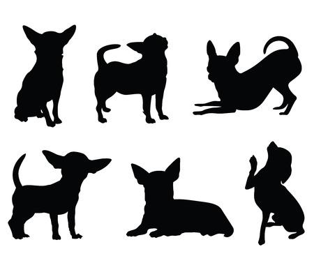 Ilustración de chihuahua dog illustration set - Imagen libre de derechos