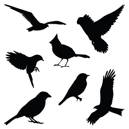 Illustration pour bird silhouette illustration set - image libre de droit