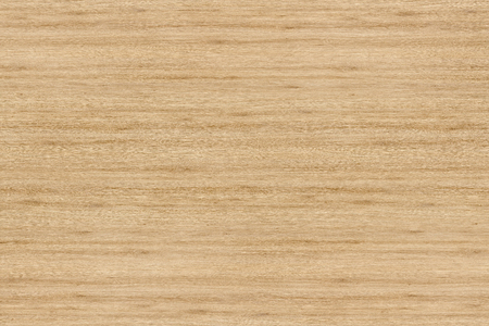 Photo for Grunge wood pattern texture background, wooden background texture - Royalty Free Image
