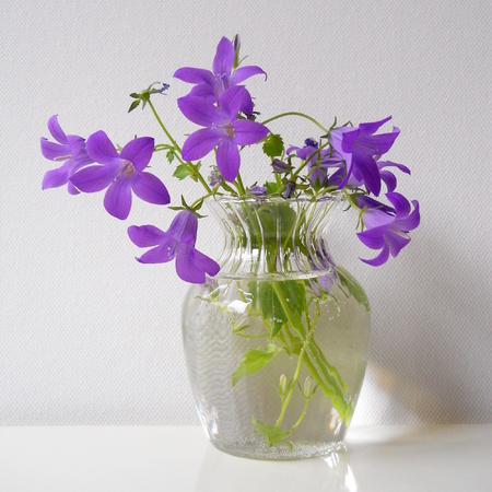 Bouquet of bluebells flowers in a glass vase