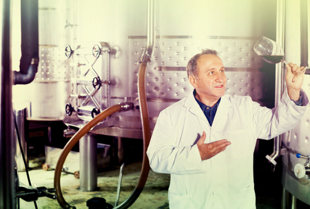 Photo for Diligent positive smiling wine maker controls quality of wine at winery - Royalty Free Image