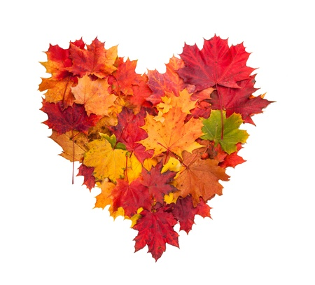 Photo for  Autumn heart symbol isolated on white background  - Royalty Free Image