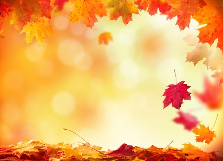 Foto de Moody autumn background with falling leaves on wooden planks - Imagen libre de derechos