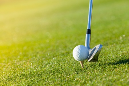 Photo for Golf club and ball in grass, low depth of focus - Royalty Free Image