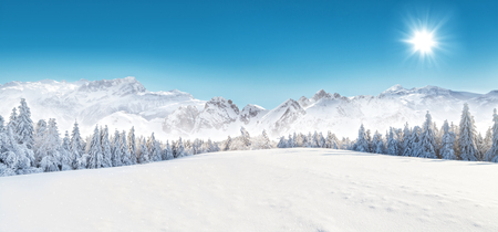 Foto de Winter snowy forest with alpen panorama and blue sky - Imagen libre de derechos