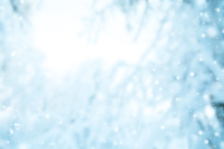 Photo pour abstract blur winter background with snowy branches - image libre de droit