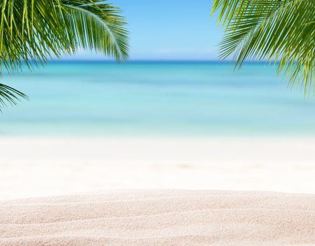 Photo for Summer sandy beach with blur ocean on background. Palm leaves on foreground - Royalty Free Image