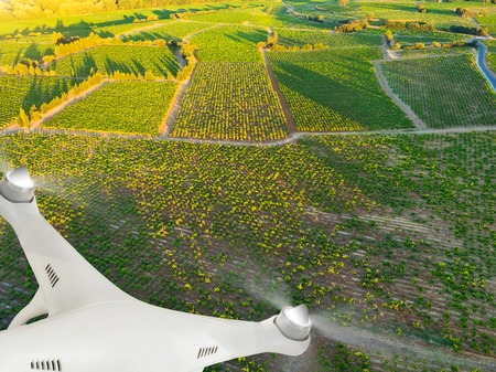 Photo for Drone flying above beautiful landscape with vineyards - Royalty Free Image