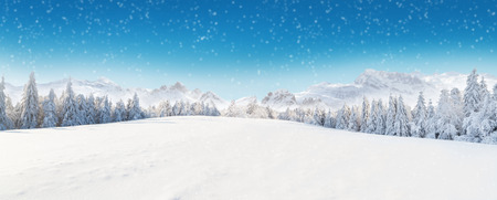 Photo pour Beautiful winter panorama with fresh powder snow. Landscape with spruce trees, blue sky with sun light and high Alpine mountains on background - image libre de droit