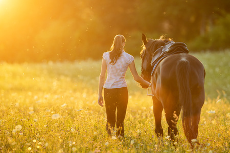 Photo for Backview of young woman walking with her horse in evening sunset light. Outdoor photography with fashion model girl. - Royalty Free Image
