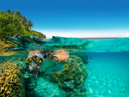 Photo for Snorkeling woman exploring beautiful ocean sealife, under and above water photography. Travel lifestyle, water sport outdoor activities, swimming and snorkeling on summer beach holidays. - Royalty Free Image