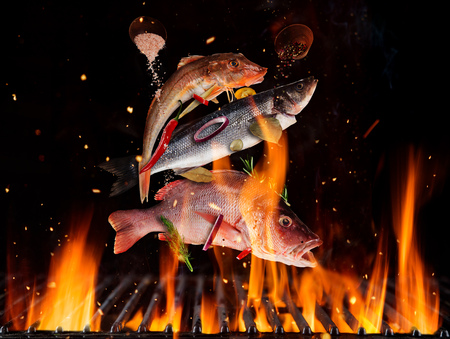 Foto de Flying sea fish above burning grill grid, isolated on black backround. Barbecue and grill concept - Imagen libre de derechos