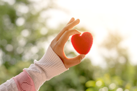 Foto de Female hand holding red heart up to the sun during morning - Imagen libre de derechos