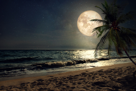 Foto de Beautiful fantasy tropical beach with Milky Way star in night skies, full moon - Retro style artwork with vintage color tone (Elements of this moon image furnished by NASA) - Imagen libre de derechos