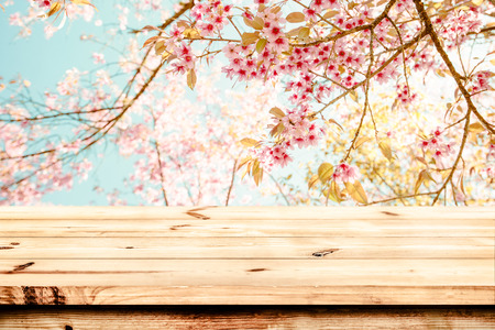 Foto de Top of wood table with pink cherry blossom flower (sakura) on sky background in spring season - Empty ready for your product and food display or montage. vintage color tone. - Imagen libre de derechos
