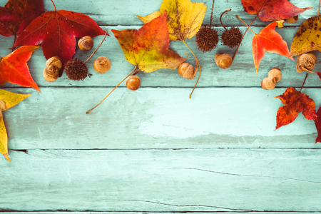 Photo pour Beautiful maple leaves on vintage wooden background, border design. vintage color tone - concept of autumn leaves in fall season background - image libre de droit