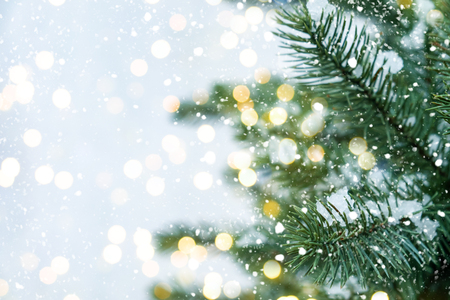 Photo for Closeup of Christmas tree with light, snow flake. - Royalty Free Image
