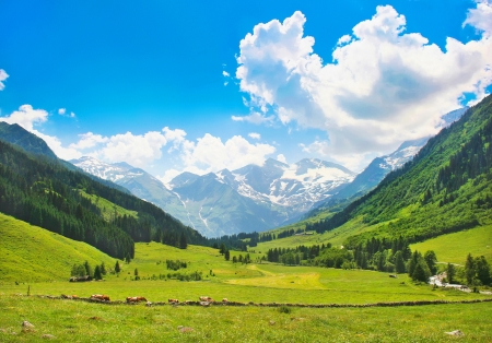 Photo pour Beautiful landscape with the Alps in Nationalpark Hohe Tauern, Salzburg, Austria - image libre de droit