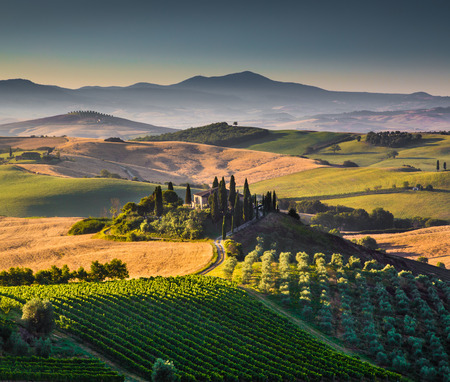 Photo pour Scenic Tuscany landscape with rolling hills and valleys in golden morning light, Val d Orcia, Italy - image libre de droit