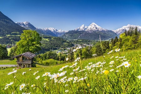 Photo pour Idyllic landscape in the Alps with traditional mountain chalet in springtime - image libre de droit