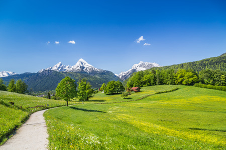 Foto de Idyllic summer landscape in the Alps, Nationalpark Berchtesgadener Land, Bavaria, Germany - Imagen libre de derechos