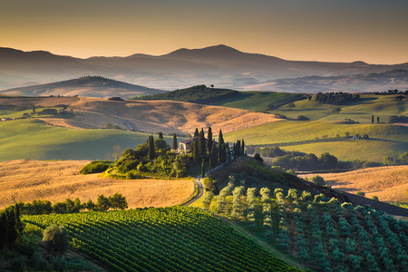 Foto de Scenic Tuscany landscape with rolling hills and valleys in golden morning light, Val d Orcia, Italy - Imagen libre de derechos