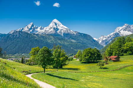 Foto de Idyllic summer landscape in the Alps with fresh green mountain pastures and snow-capped mountain tops in the background, Nationalpark Berchtesgadener Land, Bavaria, Germany - Imagen libre de derechos