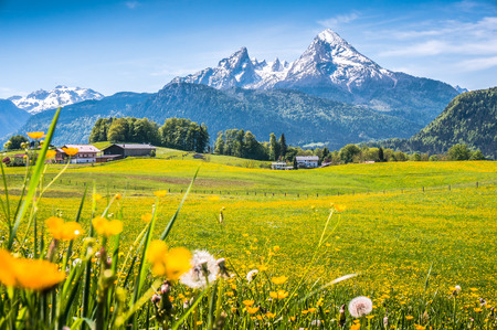 Photo for Idyllic landscape in the Alps with fresh green meadows, blooming flowers, typical farmhouses and snowcapped mountain tops in the background, Nationalpark Berchtesgadener Land, Bavaria, Germany - Royalty Free Image