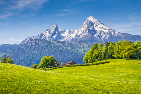Photo pour Idyllic landscape in the Alps with fresh green meadows and blooming flowers and snowcapped mountain tops in the background, Nationalpark Berchtesgadener Land, Bavaria, Germany - image libre de droit