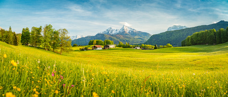 Photo pour Beautiful view of idyllic alpine mountain scenery with blooming meadows and snowcapped mountain peaks on a beautiful sunny day with blue sky in springtime - image libre de droit