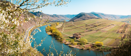 Photo pour Panoramic view of ship on famous Moselle river at Moselschleife with the historic town of Bremm on a beautiful sunny day with blue sky in springtime, Rheinland-Pfalz, Germany - image libre de droit