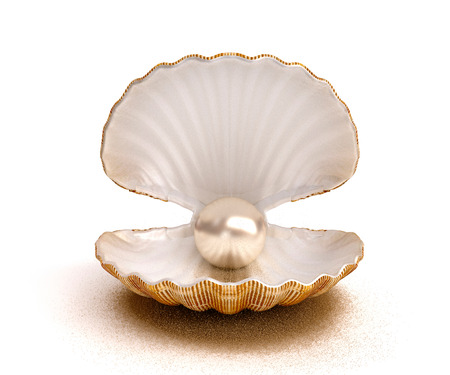 Photo for Sea shell with pearl - Royalty Free Image