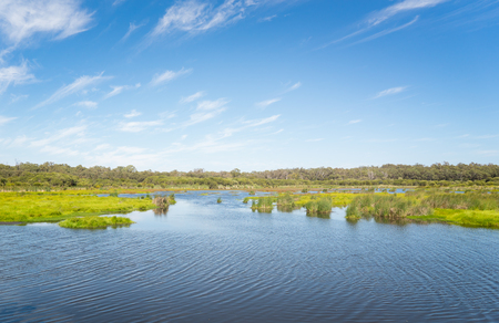 Photo for Lake in a Yanchep National Park - Royalty Free Image