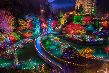 Photo for Colorful Christmas light at Buchart Gardens  - Royalty Free Image