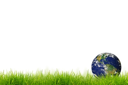 Earth in Fresh spring green grass panorama isolated on white background.