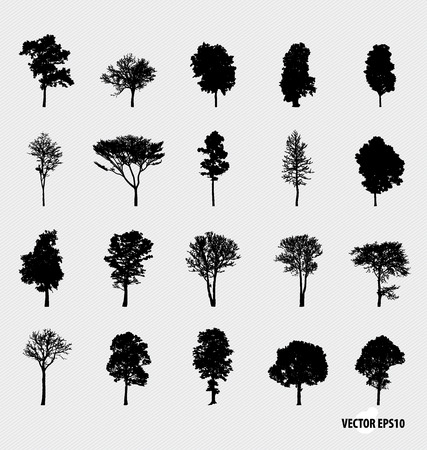 Illustration for Set of tree silhouettes. Vector illustration. - Royalty Free Image