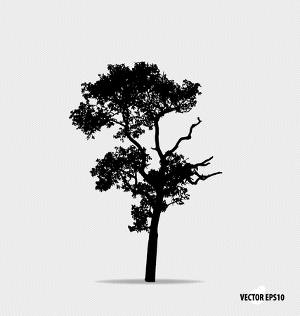 Illustration for Tree silhouette. Vector illustration. - Royalty Free Image